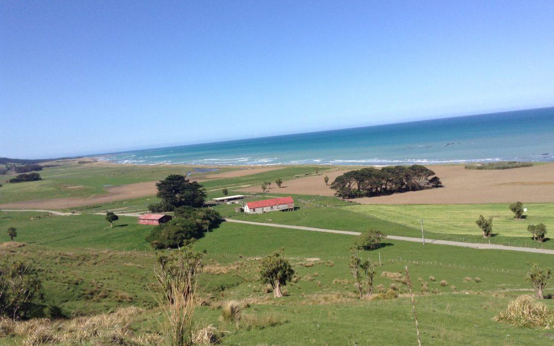Flat Point Landscape