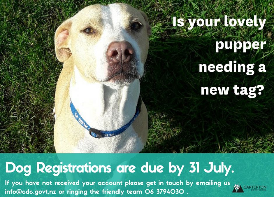 To avoid penalties, pay dog registrations by 31 July
