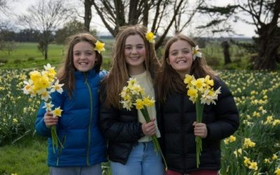 Daffodil Festival – bringing the community together