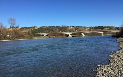 Ruamahanga River awarded for having the third most improved water quality in NZ