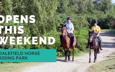 Carterton's Dalefield Horse Riding Park to open this weekend
