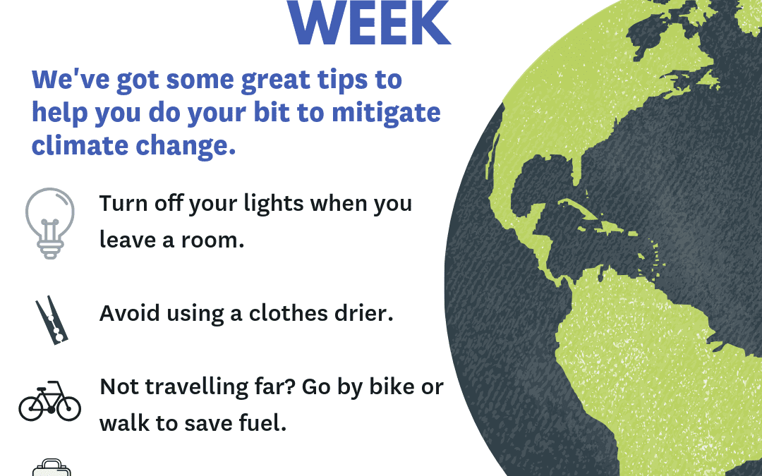 Councils take action during Global Climate Change week