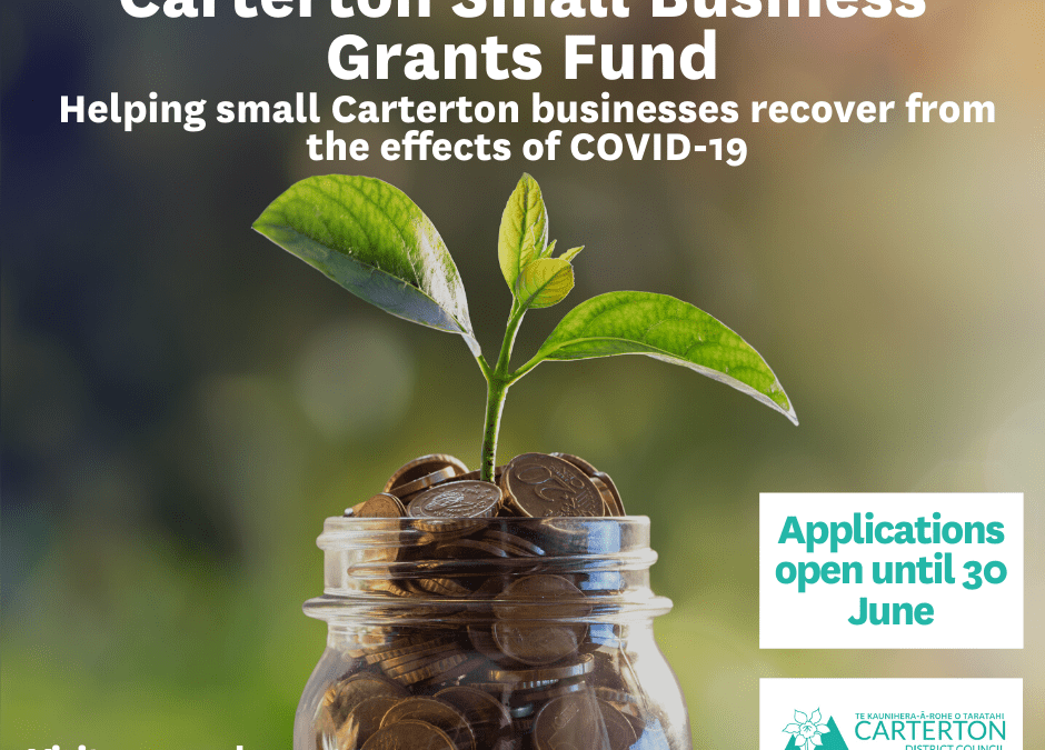 Small business grant fund applications open in June