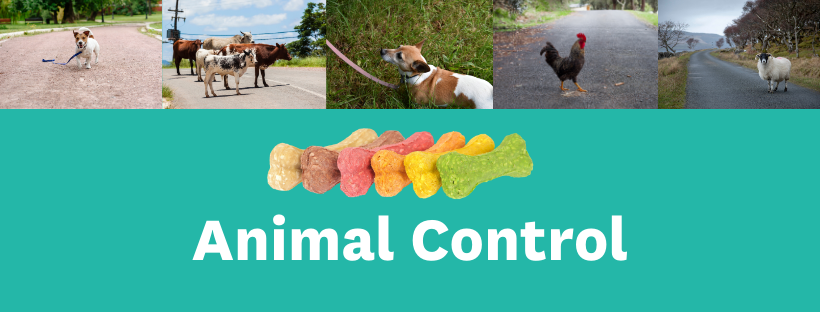 Web Banners Animal Control