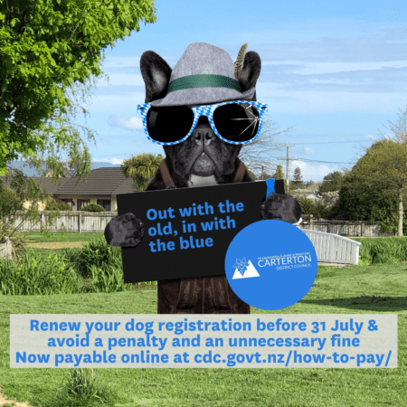 Copy Of Dog Registration 2020 For Midweek