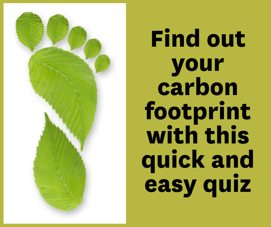 Know You Carbon Footprint With This Quick And Easy Quiz (2)