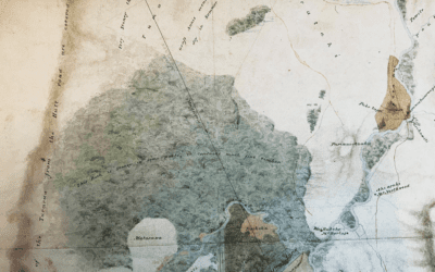 Waitangi Day – Discovering Carterton's History